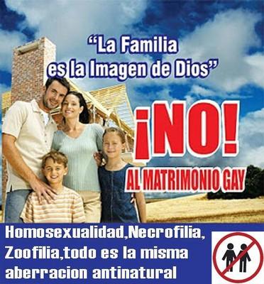 El matrimonio gay es constitucional Espaa EL PAS